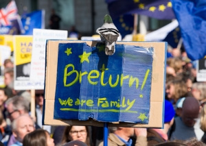 Remain banner at March for Europe - Photo by John Gomez / Shutterstock.com